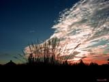 Illinois Sunset by jojomercury, Photography->Sunset/Rise gallery