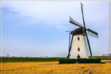 Mill In A Yellow Field by corngrowth, photography->mills gallery
