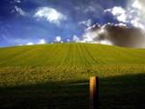 Rolling Fields by camerahound, Rework gallery