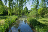 Summer Green (2) by Ramad, photography->gardens gallery