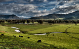 Pasture With A View. by Mythmaker, photography->landscape gallery