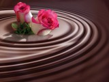 My Chocolate Rose! by marilynjane, Photography->Manipulation gallery