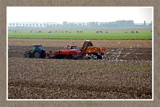 Zeeland Farming 02, Harvest Time by corngrowth, Photography->Landscape gallery