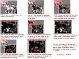 Test Tutorial by grimbug, Tutorials gallery