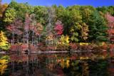 Wyman Meadow by dleuty, Photography->Landscape gallery