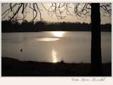 sweet dreams... by fogz, Photography->Shorelines gallery