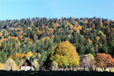 Fall in the Alps by RAPH, photography->landscape gallery