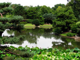 MBG - Japanese Garden VI by Hottrockin, Photography->Landscape gallery