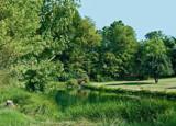 Farm Pond by sharonva, photography->landscape gallery