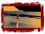 running on the beach by alby58, Holidays gallery