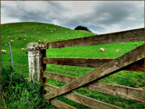Country Gate by LynEve, Photography->Landscape gallery