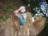 Pirate In The Tree by BernieSpeed, Photography->General gallery