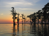 Louisiana Sunset by Vivianne, Photography->Sunset/Rise gallery