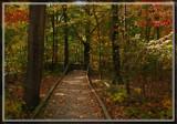 Swan Creek 2 by Jimbobedsel, photography->landscape gallery