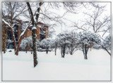 More Snow by trixxie17, photography->landscape gallery