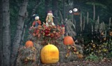 Halloween scene by GIGIBL, photography->general gallery