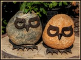 Mr. and Mrs. Whoooo? by trixxie17, photography->still life gallery