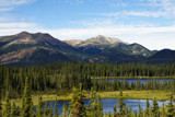 Denali Landscape by luckyshot, photography->landscape gallery