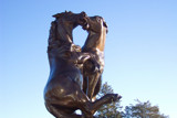 Fighting Stallions II by kidder, Photography->Sculpture gallery