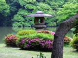 Rikugien Gardens by Toto_san, Photography->Landscape gallery