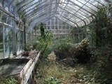 Abandoned Greenhouse by jojomercury, photography->architecture gallery
