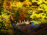 Michigan's Remarkable Autumn Story! by marilynjane, Photography->Landscape gallery
