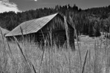 Old Turkey Cabin by rainydays, Photography->Landscape gallery