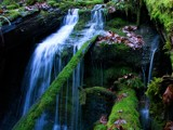 Generic Falls by mayne, Photography->Waterfalls gallery