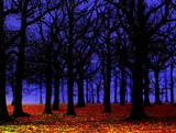 Blues and Hues by TheWhisperer, Photography->Manipulation gallery