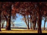 Lazy Sundown by photoimagery, Photography->Landscape gallery