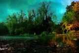 The Stream by casechaser, photography->shorelines gallery