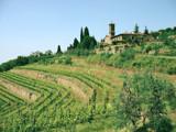 Tuscan Villa by jessedwatt, Photography->Landscape gallery