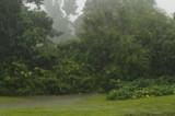 A Very Rainy Day by bfrank, photography->landscape gallery