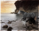 Just want to say by rhinebeck, photography->manipulation gallery