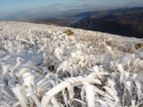 Icey blades of grass, high on a mountain top by Leahcim_62, Photography->Landscape gallery