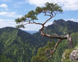 Sokolica by kiciaczek, photography->mountains gallery