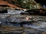 Raccoon Creek by brandondockery, Photography->Water gallery