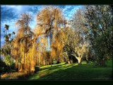 Sunshine & Shade by LynEve, Photography->Landscape gallery