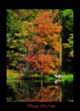 Dream In Color by SatCom, photography->shorelines gallery