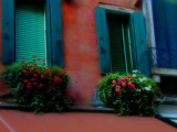 Venice Windows by charlescurtis, Photography->Architecture gallery