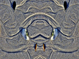 Dog with a bone by rvdb, abstract gallery
