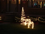 Christmas Lights by lilkittees, Holidays->Christmas gallery