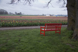 A bench for Verena by auroraobers, photography->landscape gallery