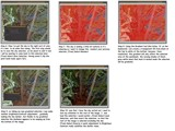 Reese Tutorial Page 2 by grimbug, Tutorials gallery