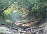Herring Creek by Mvillian, photography->landscape gallery