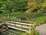 Fall Pruning by mrosin, photography->bridges gallery