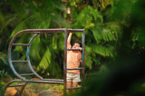 Reaching Up by prashanth, Photography->People gallery