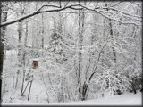 More of the White Stuff by icedancer, photography->landscape gallery