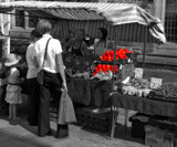Who will buy my lovely fresh Nectarines.... by biffobear, contests->b/w challenge gallery