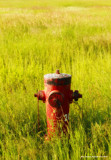 Hydrant by doughlas, photography->general gallery